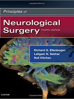 Principles of Neurological Surgery, 4e 4th Edition