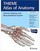 General Anatomy and Musculoskeletal System (THIEME Atlas of Anatomy) ,3e