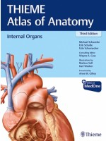 Internal Organs (THIEME Atlas of Anatomy), 3e