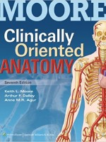 MOORE Clinically Oriented Anatomy 7/E (with thePoint Access Code)